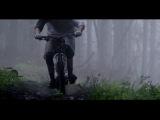 Отрывок из фильма   Life Cycles (детализация поражает)